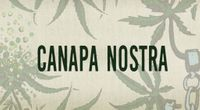Canapa Nostra (Documentario Completo in Streaming HD) by Main ambiente channel